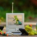 20 cosas (informáticas) que hacer en vacaciones