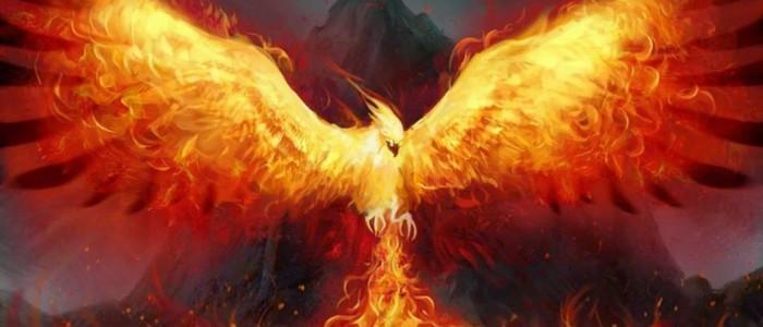 Ai încredere!  Şi tu poți fi o Pasăre Phoenix!