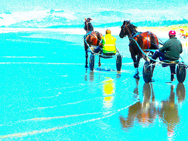 Gratuitous Picture: Training Horses In The Beach (Photo: Luis).