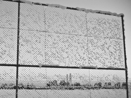 Gratuitous picture: frozen fence (Photo: Luis).