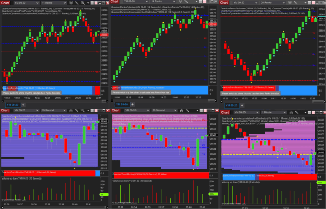 Learn how to ride the trend through congestion using multiple renko charts on NinjaTrader