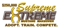 supremeextreme_logo