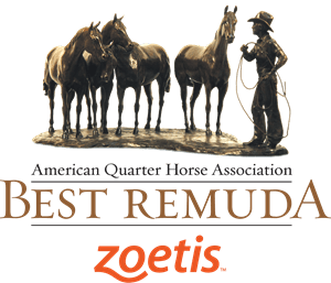 BestRemuda logo ZoetisA.ashx