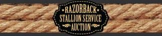 univofark-stallion-auction