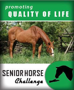 senior-horse-challenge-image