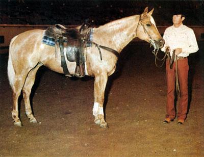 IntheBlood DiamondsSparkle Saddled