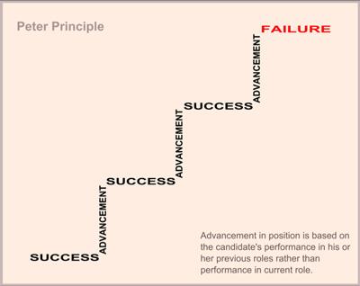 Peters principle web