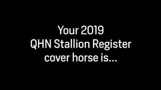 2019 QHN Stallion Register Cover Horse