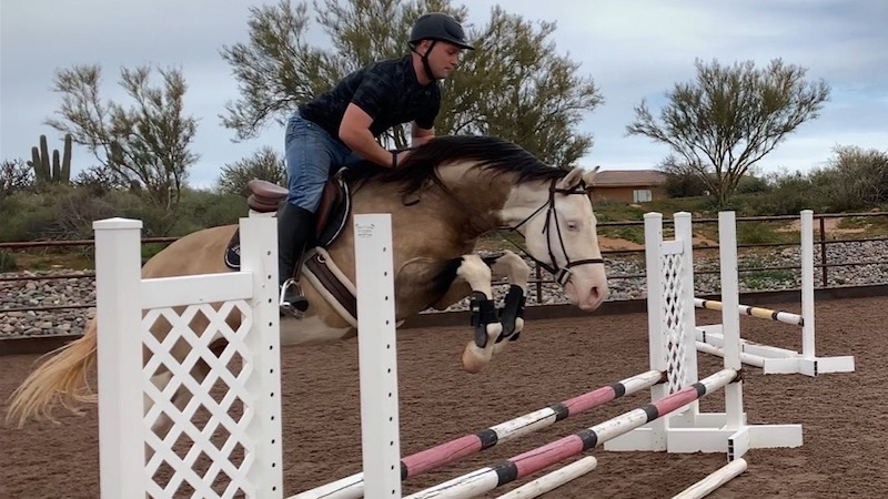 Pale Taschka, a Warmblood Quarter Horse cross, jumping