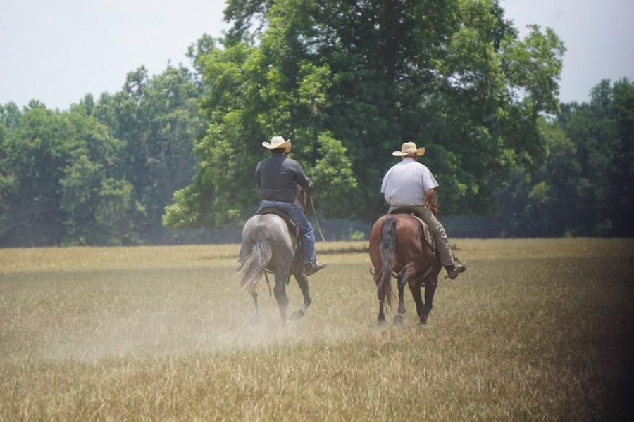 two men riding horses across field