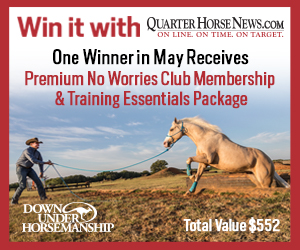 Down Under horsemanship monthly contest flyer