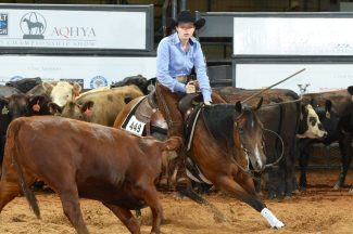 AQHYA World Show winner Faith Farris and her horse