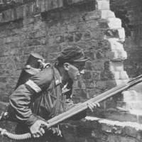 Poland, in World War II