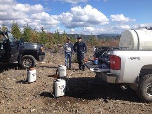 tree-planting-with-quastuco-silviculture-crew-2