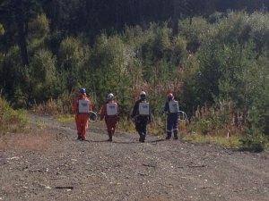tree-planting-with-quastuco-silviculture-crew