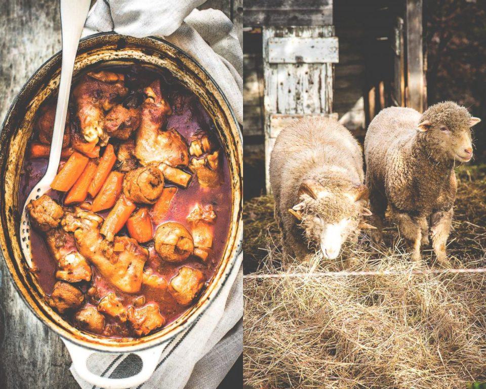 Magali ANCENAY Photographe Culinaire