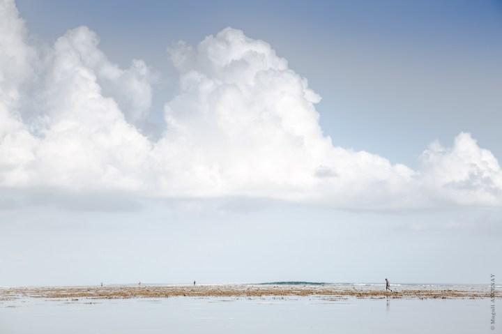 """""""Pêcheurs du lagon"""" Ile Maurice FEVR 2016"""