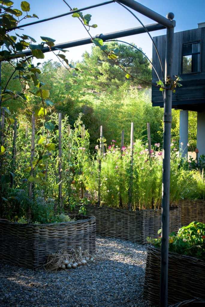 Potager des quatre saisons au jardin