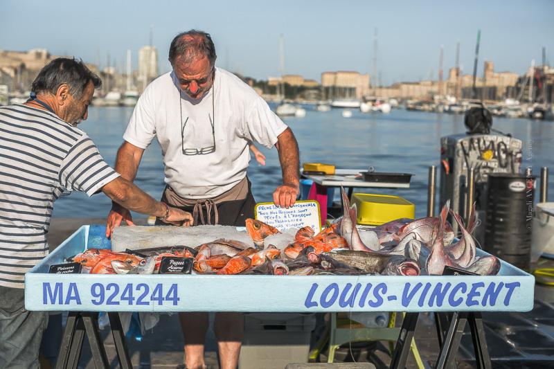 Pêcheur sur le Vieux port de Marseille