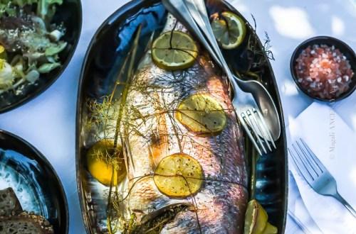 Pagre au fenouil sauvage et citron - Magali ANCENAY PHOTOGRAPHy