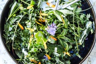 Salade sauvage, herbes et fleurs comestibles