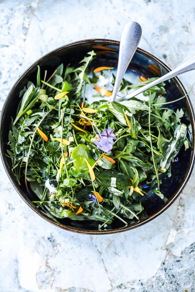 salade sauvage, herbes et fleurs comestibles - magali ANCENAY