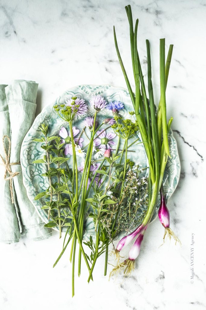 Herbes du jardin et herbes sauvages - Magali ANCENAY