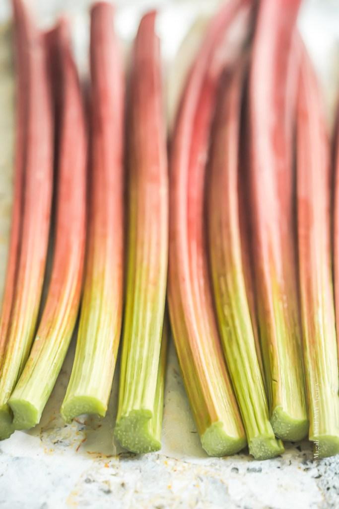 Rhubarbe - Magali ANCENAY