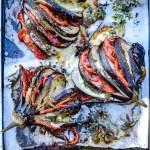 Eventails d'aubergines - Magali Ancenay