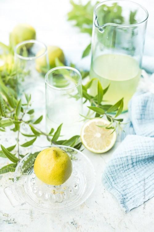 Une boisson idéale - Magali Ancenay