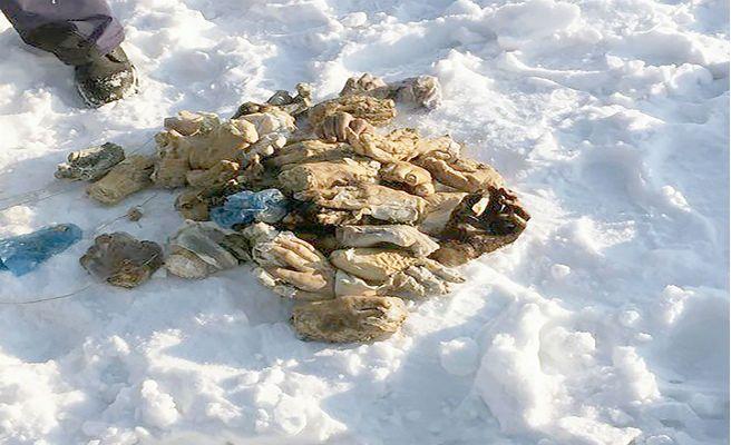 Se aclara el misterio de las 54 manos enterradas en la nieve