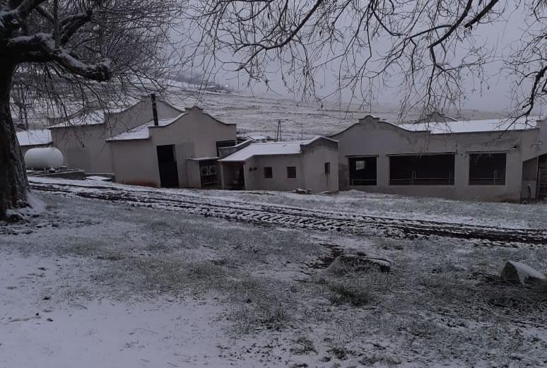Imágenes Invernales: Garrotillo en Tafí del Valle - Diario Que!