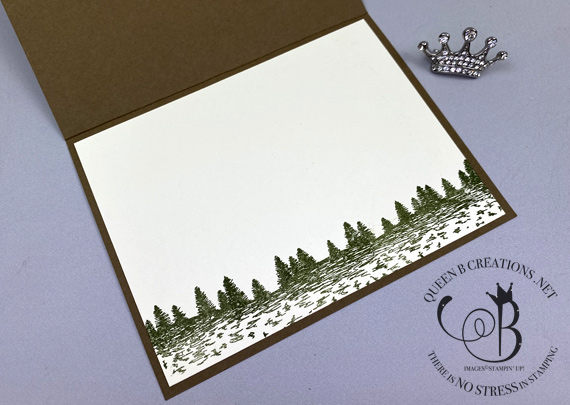 Stampin' Up! Mountain Air bundle handmade card by Lisa Ann Bernard of Queen B Creations