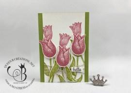Hello Timeless Tulips