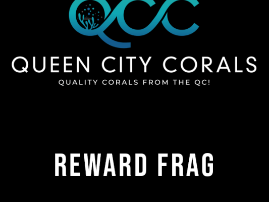 Reward Frags