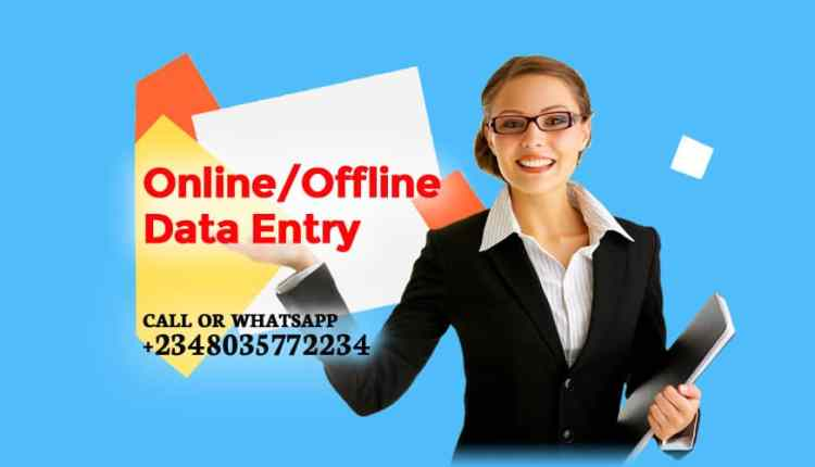 Online or Offline Data Entry