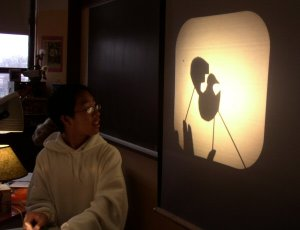 Inside Out Shadow Puppets