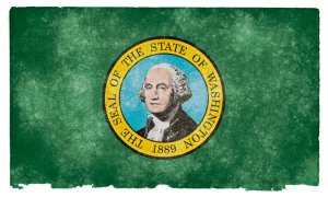 Washington grunge flag