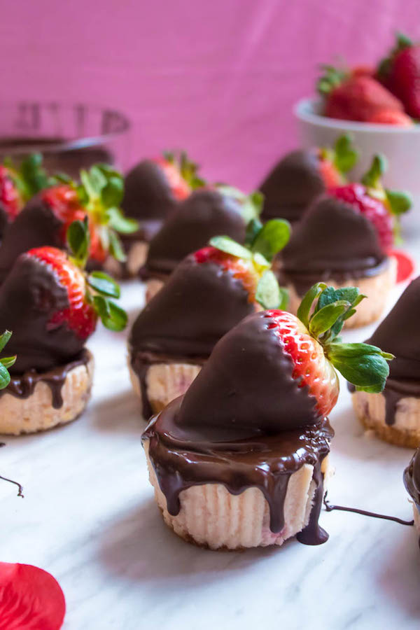 these mini chocolate covered strawberry cheesecakes are made with a creamy bite sized strawberry cheesecake valentines