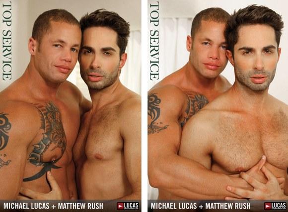 gay barnyard