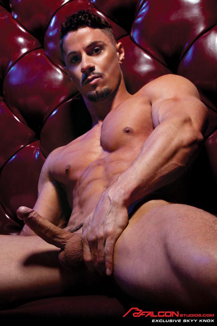 Skyy Knox Gay Porn Star Falcon Exclusive Naked
