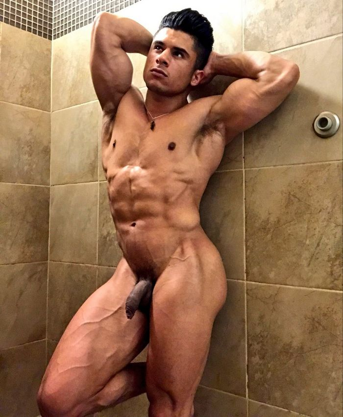 Armond Rizzo Gay Porn Star Muscle Hunk Bottom