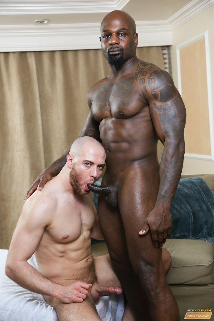 porn gay bodybuilder black