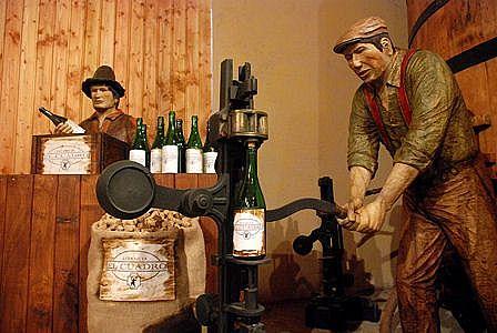 Conoce la Ruta del Vino