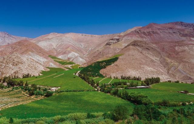 Pisco Elqui: Un árido valle de cielo siempre azul y despejado