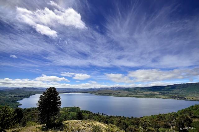 Laguna Galletué: El encantador nacimiento del río Bío Bío