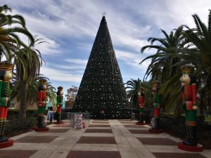 Lake Eola Park Christmas Tree
