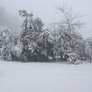 Queixería nevada Castelo Cebreiro
