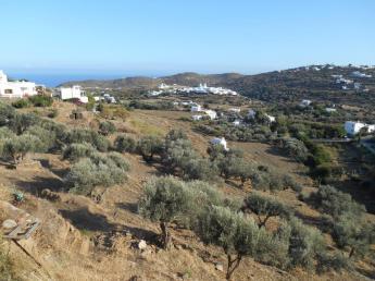 Vers Apollonia (Sifnos)