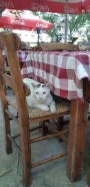 """Au restaurant """"chez Progoulis"""" de Vrysses (Crète)"""